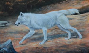 Acrylic wolf painting by bhymer.